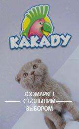 zoomarket-kakadu.kz