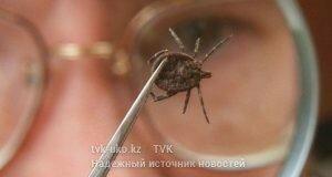 фото с сайта mtdata.ru